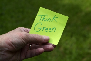 Help Your Office Go Green